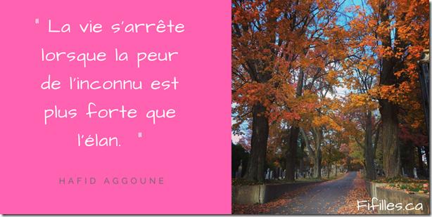 « La vie s'arrête lorsque la peur de l'inconnu est plus forte que l'élan. » Hafid Aggoune